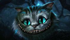 the Alice in wonderwall's cat