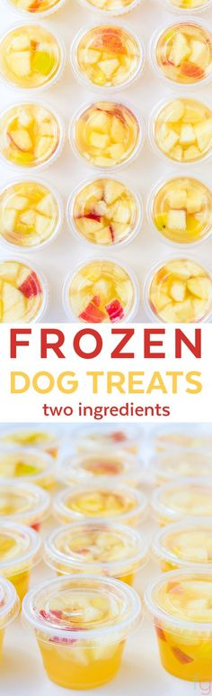 Frozen Dog Treats Homemade - Summer Dog Treats Frozen Ice Cubes - Homemade Dog Treats Easy - Homemade Frozen Dog Treats Recipe - Chicken Apple Dog Treats - Chicken Broth Dog Treats Frozen - Apple Dog Treats Homemade