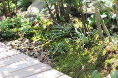 アプローチ - 雑木の庭・外構・エクステリア|静岡県浜松市|ナインスケッチ