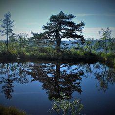 gautefall sommer - Google-søk River, Mountains, Google, Nature, Outdoor, Summer Recipes, Outdoors, Naturaleza, Rivers