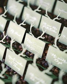 Paper antlers rose from the top of sage-green escort cards in a witty nod to the bucolic location.