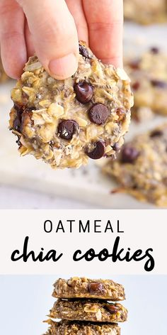 Oatmeal Chia Cookies – These oatmeal chia cookies are perfect for breakfast or as a healthy snack. The texture is chewy an – Oatmeal Chia Cookies – These oatmeal chia cookies are perfect for breakfast or as a healthy snack. The texture is chewy an – Healthy Cookies, Healthy Sweets, Healthy Baking, Dinner Healthy, Healthy Breakfast Cookies, Healthy Banana Muffins, Healthy Chocolate Chip Cookies, Healthy Sweet Treats, Brownie Cookies