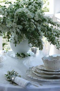 Bella mesa con trinitarias blancas
