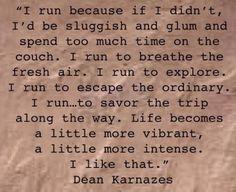 "Perfectly said. ""I run because..."""