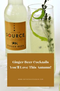 Frozen Cocktails, Fall Cocktails, Holiday Drinks, Cocktail And Mocktail, Best Cocktail Recipes, Gin Lovers, Fancy Drinks, Summer Barbecue, Ginger Beer