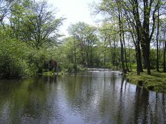 Warwick County Park, 382 County Park Road, Pottstown, PA 19465, 610-469-1916 - 530 acres.