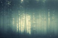 Misty & Atmospheric by Joni Niemelä, via Behance