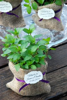Plant Wedding Favors, Here Comes The Bride, Potted Plants, Pottery, Flowers, Pot Plants, Ceramica, Pottery Marks, Royal Icing Flowers