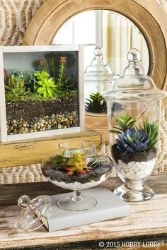 When it comes to succulent container gardens, it's more than okay to think outside the pot—especially when you're going faux. Apothecary jars can double as elegant tabletop terrariums. And a basic shadow box can become a paradise under glass (instructions next page).