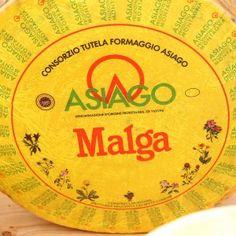 """ASIAGO D.O.P. D'ALLEVO L'Asiago d'Allevo presenta una pasta semigrassa; semidura per la tipologia Mezzano; dura, a lunga stagionatura per la tipologia d'Allevo. Le forme provenienti dalle zone di montagna possono fregiarsi della dicitura """"Prodotto della Montagna"""". Formaggio tipico dell'altopiano di Asiago (Vicenza) da latte di vacca che si """"alleva"""", ovvero si stagiona."""