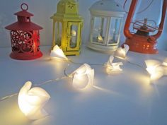 #minilight #fairylight #luzdefada #fiodeluz #luminariadefio #luzindireta #floriluminada