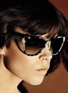 designer-bag-hub.com sunglasses fashion.com,  la fashion district sunglasses,  sunglasses fashion eyewear,  eighties fashion sunglasses,  fashion sunglasses for men,   Fashion Eyewear Roberto Cavalli 2012 Spring-Summer Campaign