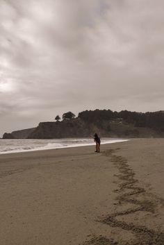 Navarro Beach, California