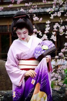 Japanese Geisha, Japanese Beauty, Japanese Kimono, Japanese Style, Japanese Art, Kyoto, Kabuki Costume, Geisha Hair, Kimono Japan