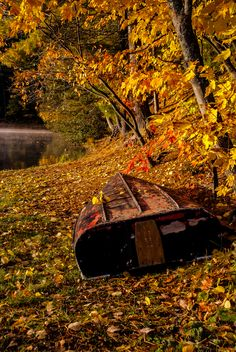 Boat in Fall Colors by Robert Greatrix on ~ Bon Echo Provincial Park, Ontario, Canada* Overflow Cafe Nova Scotia, Quebec, Fall Inspiration, Ontario Parks, Best Seasons, Fall Season, Autumn Leaves, Autumn Fall, Winter