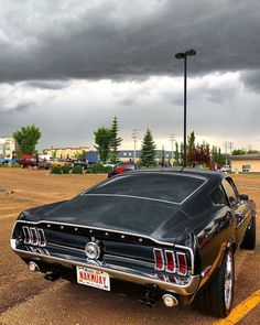 American muscle cars have already been a staple of this automobile 1967 Mustang, Ford Mustang Fastback, True Car, Classic Mustang, Guitar Building, Rear Wheel Drive, Us Cars, American Muscle Cars, Cool Cars