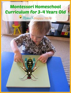 A weekly outline of our Montessori Homeschool curriculum for 3-4 year olds. This is a 8 part series for incorporating Montessori education into your home. - www.mamashappyhive.com