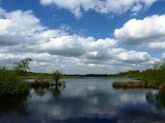 De Peel in Limburg, een bijzonder stuk natuur!