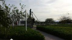 Praça Hercílio Luz - Florianópolis - SC