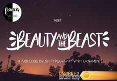 Beauty and the Beast Font  http://www.desirefx.me/beauty-and-the-beast-font/