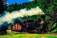 Mocanita Mariuta Steam Engine, Train Station, Romania, Explore, Country, Classic, Heart, Sweet, Trains