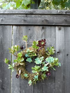 A succulent wreath adorns a redwood fence. Garden Fencing, Garden Art, Garden Landscaping, Garden Design, Fence Design, Garden Beds, Succulent Gardening, Succulents Garden, Gardening Tips