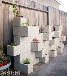 fun planter wall made with cinder blocks (by Zack Benson)
