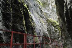 Seven Ladders canyon Romania Carpathians beautiful Eastern Europe natural Beautiful Scenery, Most Beautiful, Tourist Places, Eastern Europe, Countries Of The World, Romania, Tourism, Waterfall, Mountains