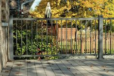 Vinyl Fence Railing Decking in Medina Brunswick Wadsworth Orrville Wooster Outdoor Rooms, Outdoor Ideas, Deck Railings, Fence, Swimming Pools, Bronze, Outdoor Structures, Texture, Swiming Pool