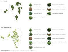 plant list - Google Search