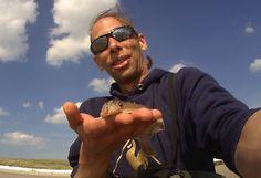 Angeln in Holland am Meer. Am Meer, Solar, Mens Sunglasses, International Waters, North Sea, Men's Sunglasses