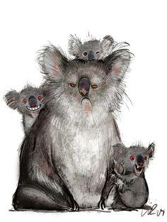 Mama Koala has had enough of her children! By Wiebke Rauers
