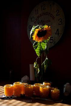 Freshly marinated pumpkins by BirgitVaarandi
