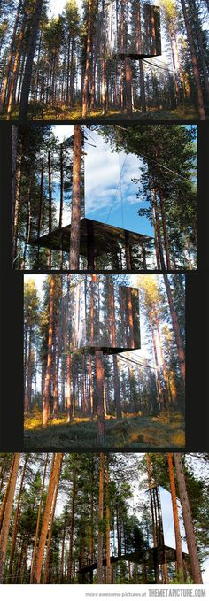 Mysterious Mirror Treehouse in Sweden.