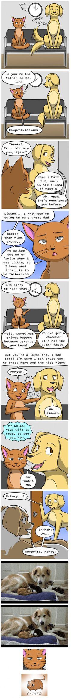 What a b*tch! (Behind the GIFs Comic by Kat Swenski)