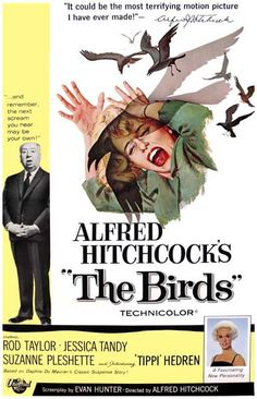 A great poster from The Birds - the unforgettable classic movie from Master of Suspense Alfred Hitchcock! Check out the rest of our excellent selection of Alfred Hitchcock posters! Need Poster Mounts. Classic Movie Posters, Horror Movie Posters, Classic Movies, Film Posters, Old Movie Posters, Scary Movies, Great Movies, Movies Free, The Birds Movie
