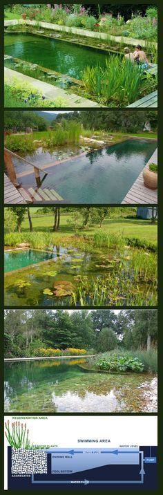 10 Wonderful And Cheap Diy Idea For Your Garden 7 Interior Wall Colors Pool Water And French Grey