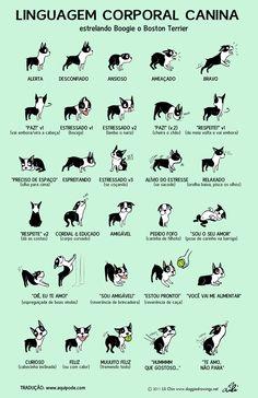 O Doggie Drawings é um site de uma artista que faz retratos de totós. Ela é a responsável pela criação deste poster, que nós do Aquipode traduzimos para o português. Uma belezinha :) ...e lembre-se sempre de consultar o Aquipode quando quiser sair com seu totó!!
