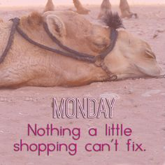 Online Shopping fixes everything ... even Monday blues. #monday #onlineshopping