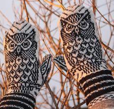 Night Owl Mittens Knitting Kit by Jorid Linvik Featuring Cloudborn Merino Superwash Sock Twist Yarn Knitting Kits, Easy Knitting, Knitting Stitches, Knitting Patterns Free, Knitting Projects, Knitting Supplies, Free Pattern, Sewing Patterns, Mittens Pattern