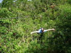 Forest Adventure Park Ziplining