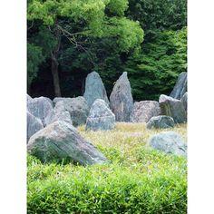 """松尾大社・松風苑「上古の庭」 Japanese garden """"Joko no niwa"""" in Matsuo taisha shrine was designed by Mirei Shigemori. Just after he made this garden, he died at the age of 79. He thought the origin of Japanese garden was this """"iwakura"""" style.  三玲氏最後のお庭「上古の庭」。 山中の巨岩に神霊が宿ると考えられていた、磐座(いわくら)の思想を表したお庭です。 「永遠のモダン」と称されるような現代的なお庭で注目された彼ですが、お庭の根源はこの磐座にあるのだと、最後には一周ぐるりと回って、自然に還ってきたような。そんな気がしました。 まじめかヾ(゜0゜*)! . #kyoto #japanesegarden #matsuotaisha #shrine #MireiShigemori #日本庭園 #松尾大社 #重森三玲 #上古の庭"""