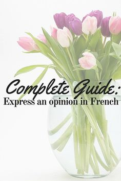 opinion french language free selfrench lesson