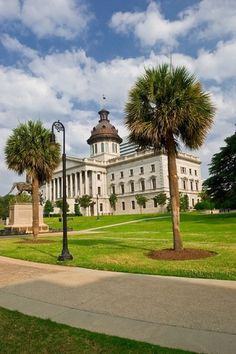 See the famous palmetto trees of Columbia, SC.