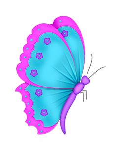 SD RNR BUTTERFLY 1.png