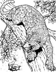 kostenloses ausmalbild hund - pinscher. die gratis mandala malvorlage einfach ausdrucken und