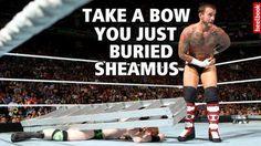 CM Punk takes a bow.