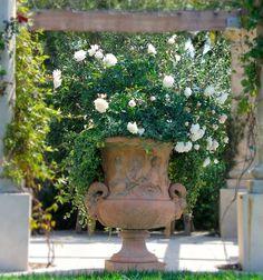Dekor i trädgården – vackra urnor sätter en medelhavsstil - Sköna hem