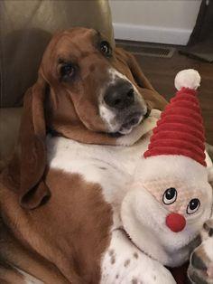 GracieB and Santa