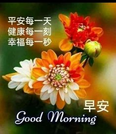 Happy Morning Quotes, Good Morning Cards, Morning Wish, Chinese Quotes